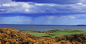 lynebain-golf-royal-2